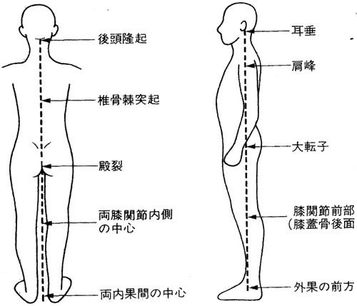 「重心 体」の画像検索結果